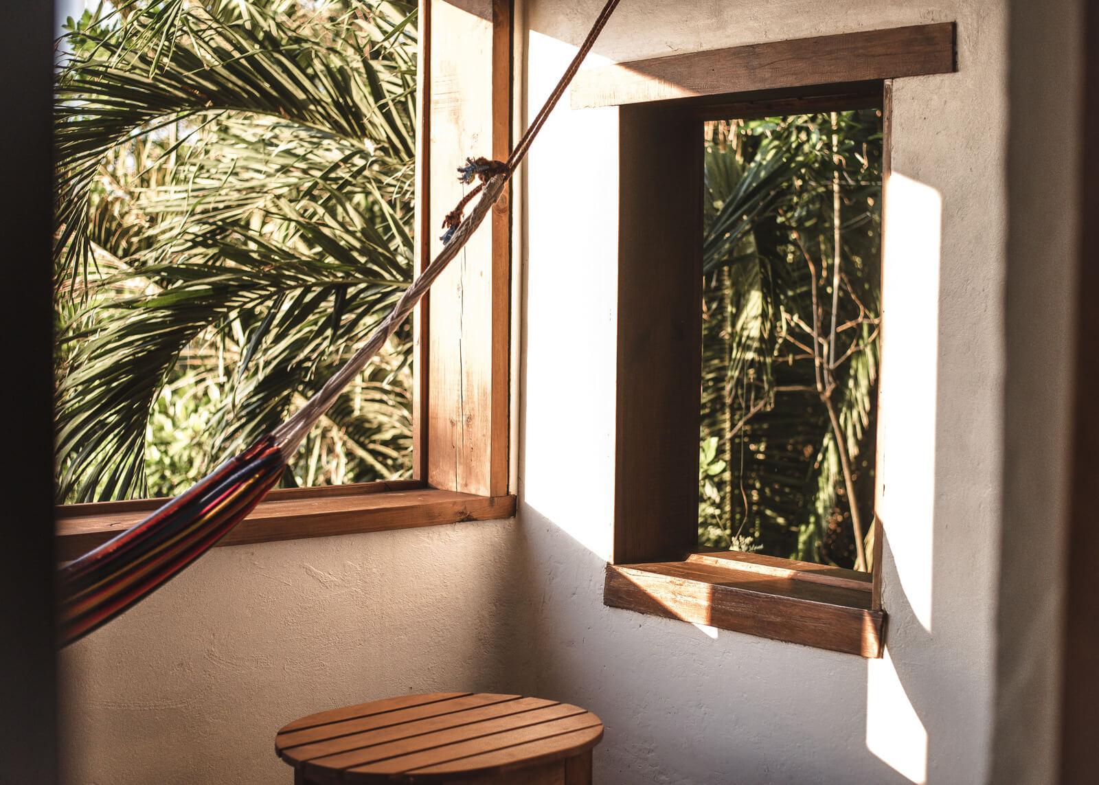 terrace-gecko-tranquilseas