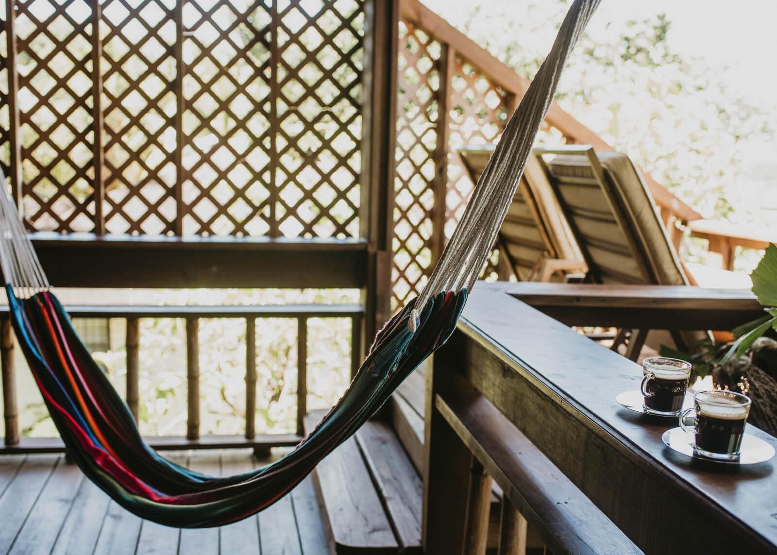 three-frog-hammock