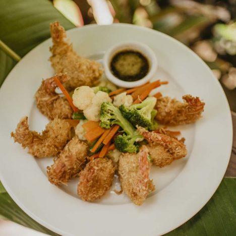 Tranquilseas shrimp