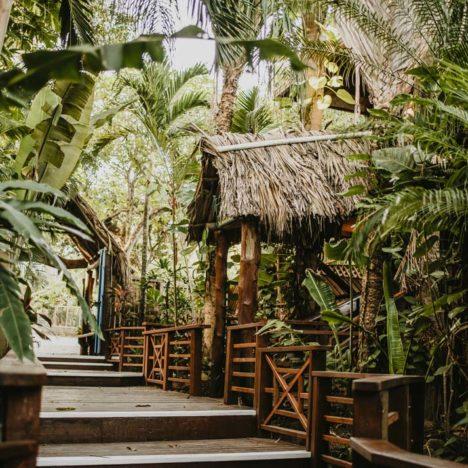 Tropická zahrada v